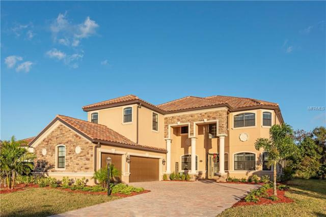13810 Swiftwater Way, Lakewood Ranch, FL 34211 (MLS #C7409217) :: Medway Realty
