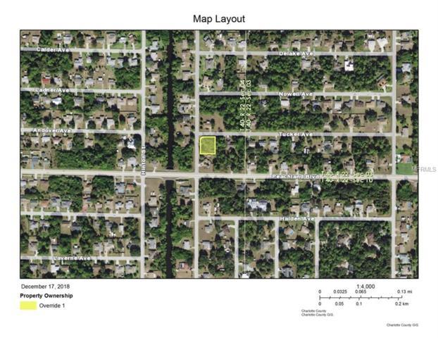 21011 Tucker Avenue, Port Charlotte, FL 33954 (MLS #C7409397) :: The Price Group