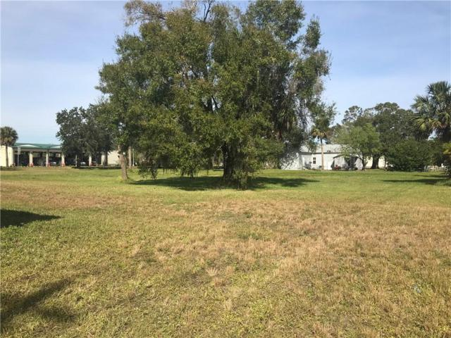 136 N Desoto Avenue, Arcadia, FL 34266 (MLS #C7409560) :: Rabell Realty Group