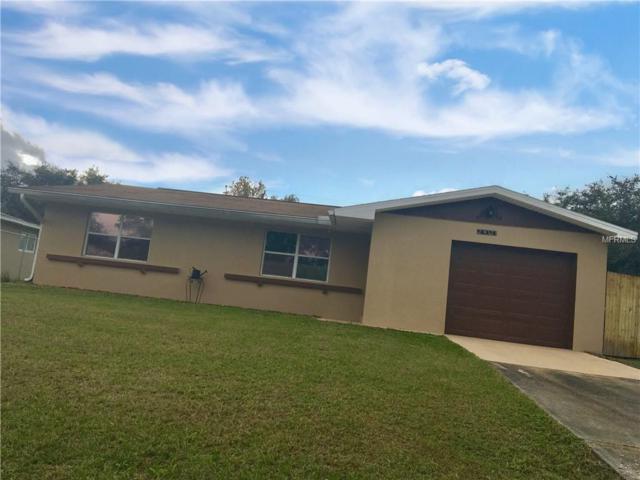 23023 Jumper Avenue, Port Charlotte, FL 33952 (MLS #C7409570) :: Homepride Realty Services