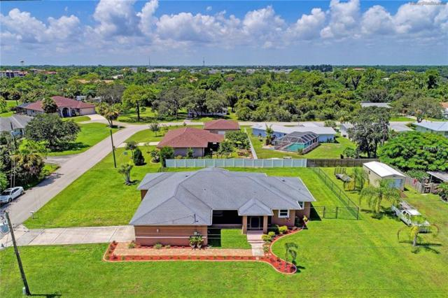 1215 Pine Court, Port Charlotte, FL 33980 (MLS #C7409799) :: RealTeam Realty