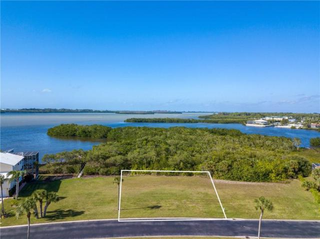 9731 Eagle Preserve Drive, Englewood, FL 34224 (MLS #C7409958) :: The Duncan Duo Team