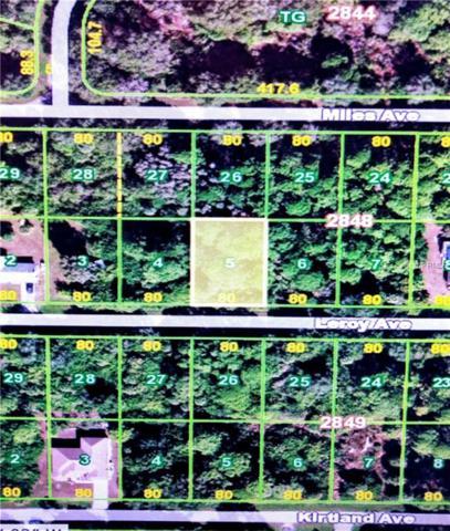12062 Leroy Avenue, Port Charlotte, FL 33953 (MLS #C7410073) :: Homepride Realty Services