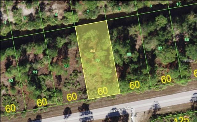 27332 Sandrala Drive, Punta Gorda, FL 33955 (MLS #C7410113) :: Homepride Realty Services