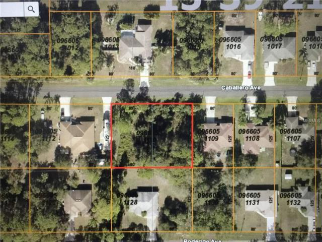 Caballero Avenue, North Port, FL 34286 (MLS #C7410216) :: Griffin Group