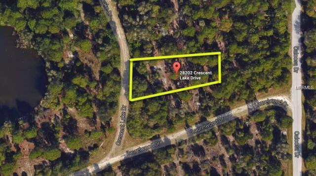 28202 Crescent Lake Drive, Punta Gorda, FL 33955 (MLS #C7410288) :: Homepride Realty Services