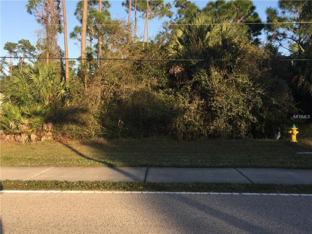 17514 Cape Horn Boulevard, Punta Gorda, FL 33955 (MLS #C7410389) :: Remax Alliance