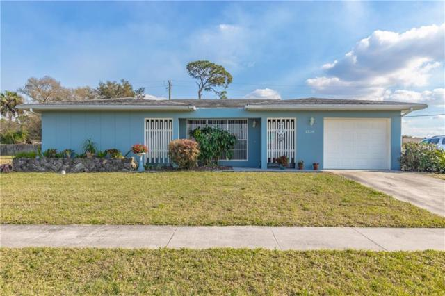 2338 Beacon Drive, Port Charlotte, FL 33952 (MLS #C7410415) :: Homepride Realty Services