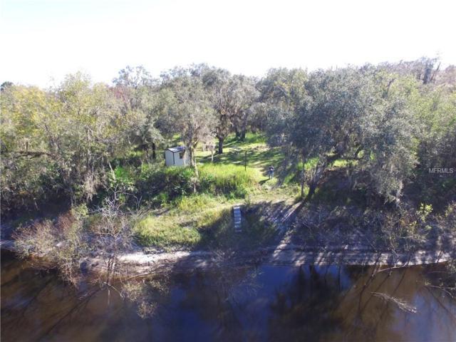 5079 NW Hidden Lake Circle, Arcadia, FL 34266 (MLS #C7410422) :: Homepride Realty Services