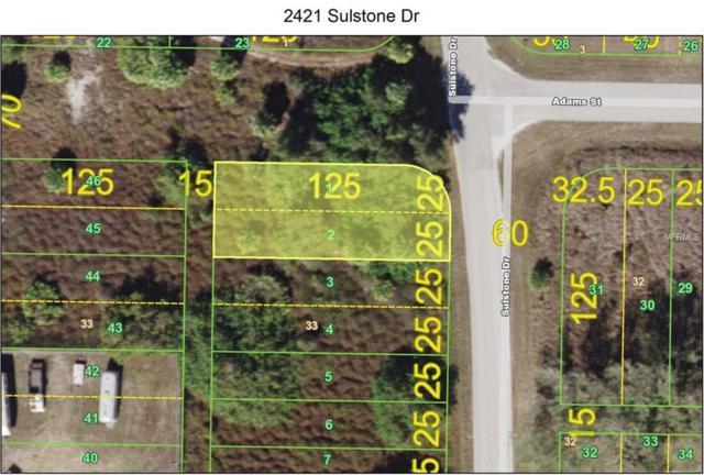 2421 Sulstone Drive, Punta Gorda, FL 33983 (MLS #C7410456) :: Homepride Realty Services