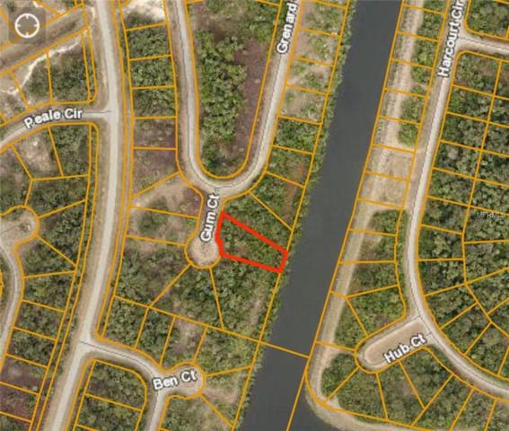 Gum Court, North Port, FL 34288 (MLS #C7410630) :: Keller Williams Realty Peace River Partners