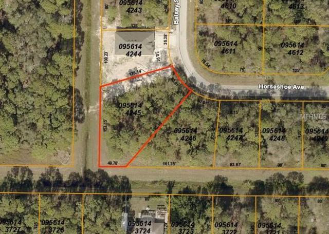 Horseshoe Avenue, North Port, FL 34286 (MLS #C7410657) :: NewHomePrograms.com LLC