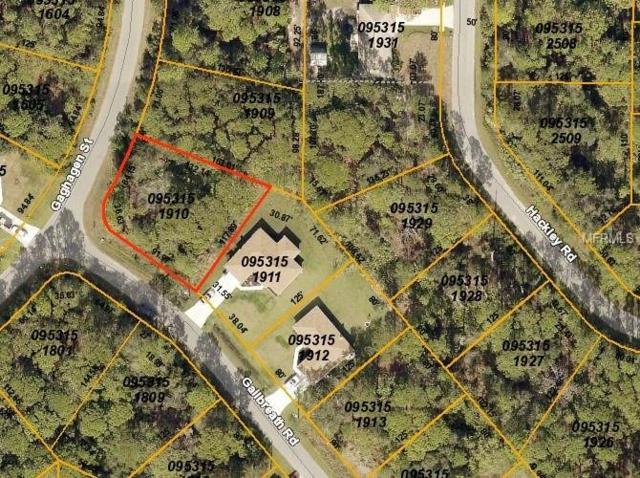 Gailbreath Road, North Port, FL 34291 (MLS #C7410695) :: Griffin Group