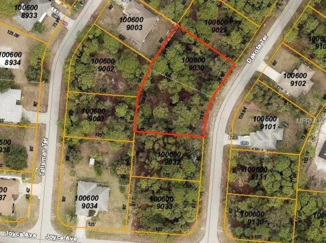 Dakota Terrace, North Port, FL 34286 (MLS #C7411168) :: Griffin Group
