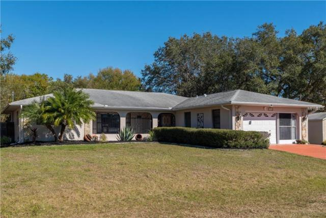 23222 Fitzpatrick Avenue, Port Charlotte, FL 33980 (MLS #C7411252) :: The Light Team