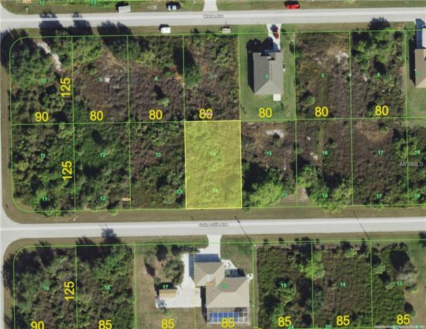 13424 Gainesville Avenue, Port Charlotte, FL 33981 (MLS #C7411458) :: GO Realty