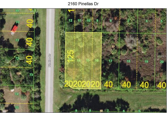 2160 Pinellas Drive, Punta Gorda, FL 33983 (MLS #C7411534) :: The Duncan Duo Team