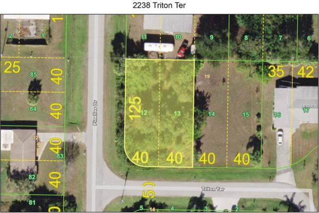 2238 Triton Terrace, Punta Gorda, FL 33983 (MLS #C7411545) :: The Duncan Duo Team