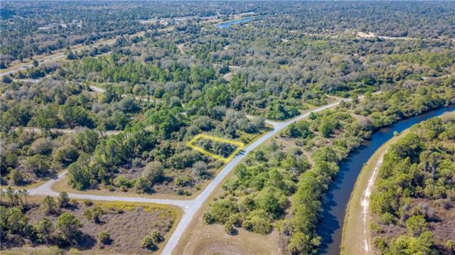 Newman Drive, North Port, FL 34288 (MLS #C7411784) :: Zarghami Group