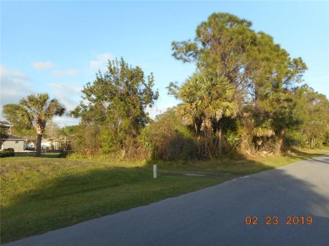 Dekle Avenue, North Port, FL 34286 (MLS #C7411881) :: GO Realty