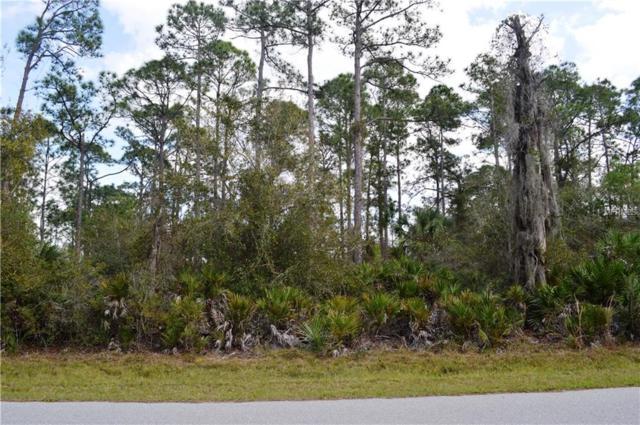 3388 Douglas Road, Port Charlotte, FL 33980 (MLS #C7411923) :: KELLER WILLIAMS CLASSIC VI