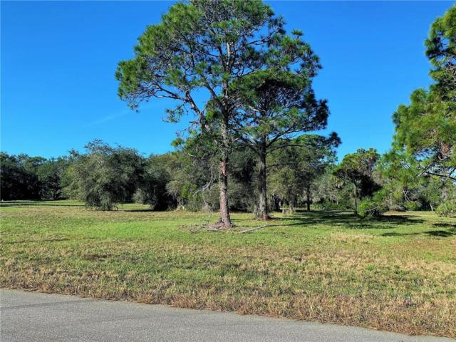29 Mate Circle, Placida, FL 33946 (MLS #C7412038) :: Burwell Real Estate