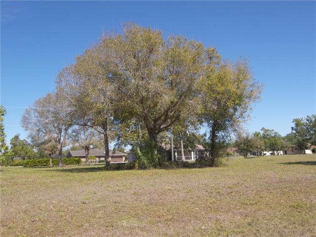 16438 Minorca Drive, Punta Gorda, FL 33955 (MLS #C7412044) :: RealTeam Realty
