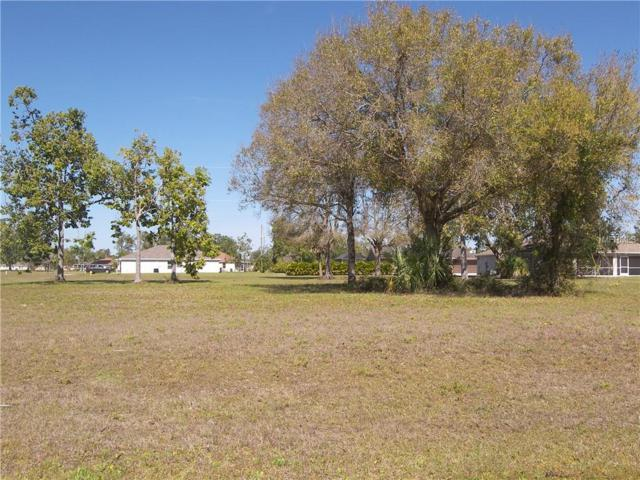 16339 Perdida Court, Punta Gorda, FL 33955 (MLS #C7412047) :: Zarghami Group