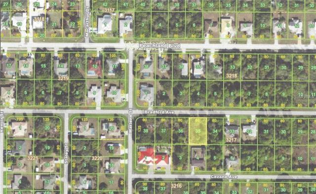 22403 Bradford Avenue, Port Charlotte, FL 33952 (MLS #C7412130) :: Griffin Group
