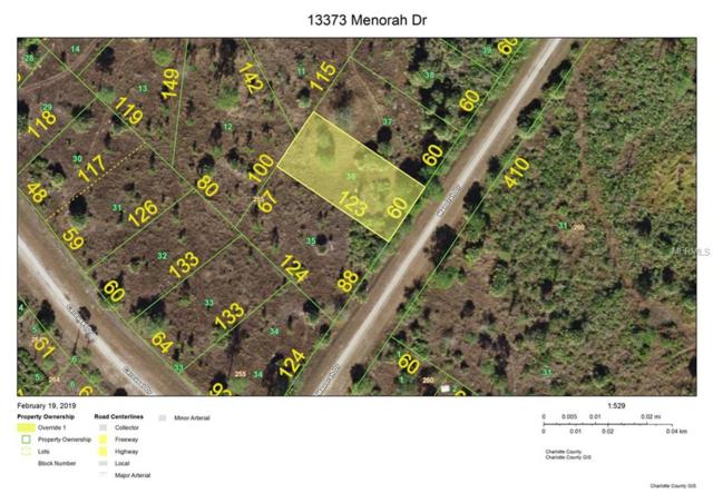 13373 Menorah Drive, Punta Gorda, FL 33955 (MLS #C7412140) :: The Duncan Duo Team
