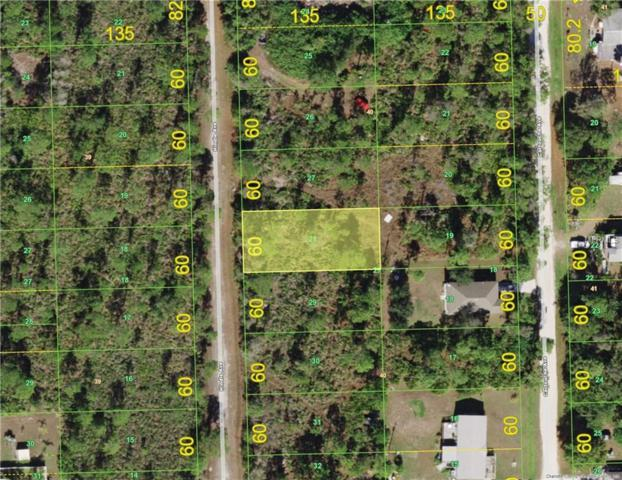 12162 Hindle Avenue, Punta Gorda, FL 33955 (MLS #C7412439) :: GO Realty