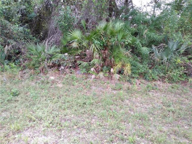 12403 Kneeland Terrace, Port Charlotte, FL 33981 (MLS #C7412448) :: RE/MAX Realtec Group