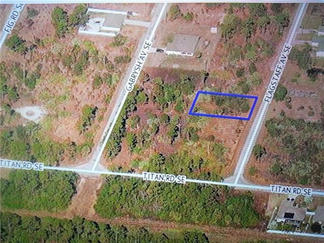 3042 Flagstaff Avenue SE, Palm Bay, FL 32909 (MLS #C7412591) :: Premium Properties Real Estate Services
