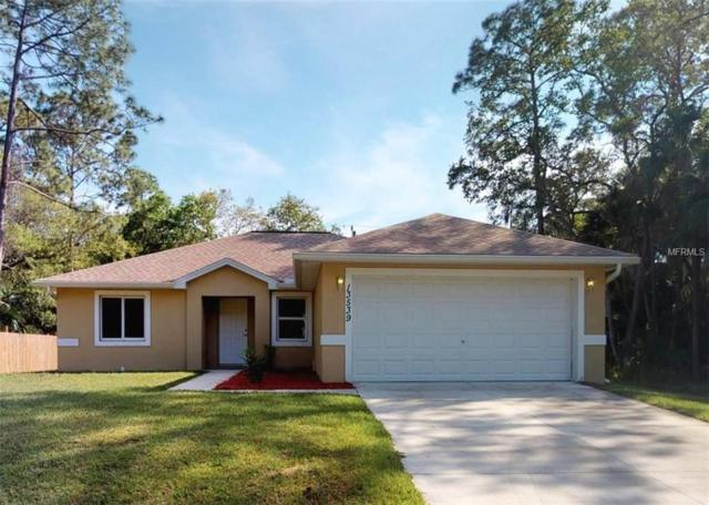13539 Jaeger Avenue, Port Charlotte, FL 33953 (MLS #C7413202) :: GO Realty