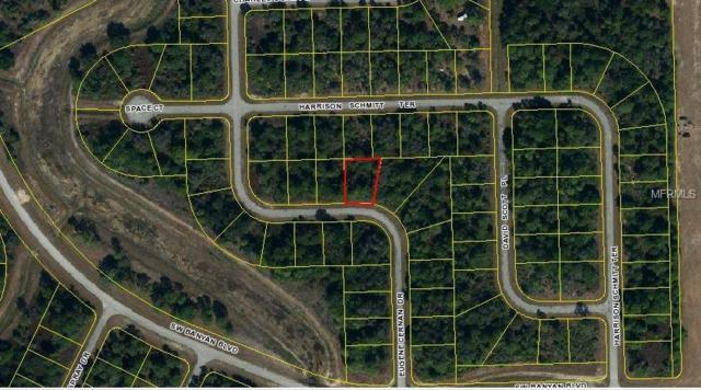 715 Eugene Cernan Drive, Labelle, FL 33935 (MLS #C7413249) :: The Duncan Duo Team