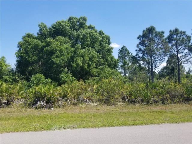 102 Holloman Street, Port Charlotte, FL 33954 (MLS #C7413525) :: Mark and Joni Coulter | Better Homes and Gardens