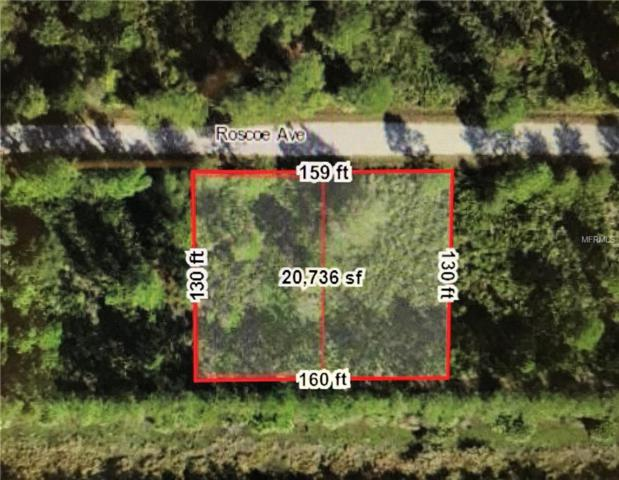 23509 &  23501 Roscoe Avenue, Port Charlotte, FL 33980 (MLS #C7413571) :: RE/MAX Realtec Group