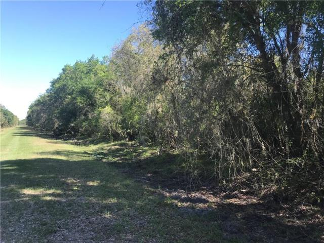 SW Adventure Way, Arcadia, FL 34266 (MLS #C7413578) :: Keller Williams Realty Peace River Partners