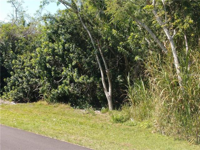 1926 Poinciana Avenue, Punta Gorda, FL 33950 (MLS #C7413659) :: The Duncan Duo Team
