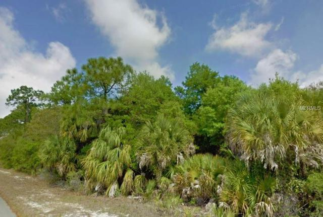 17174 Geoffrey Avenue, Port Charlotte, FL 33948 (MLS #C7413669) :: Delgado Home Team at Keller Williams