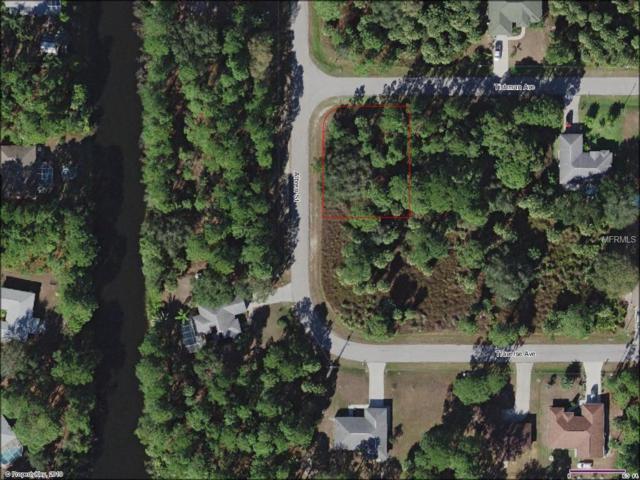 Tishman Avenue, North Port, FL 34286 (MLS #C7413803) :: Medway Realty