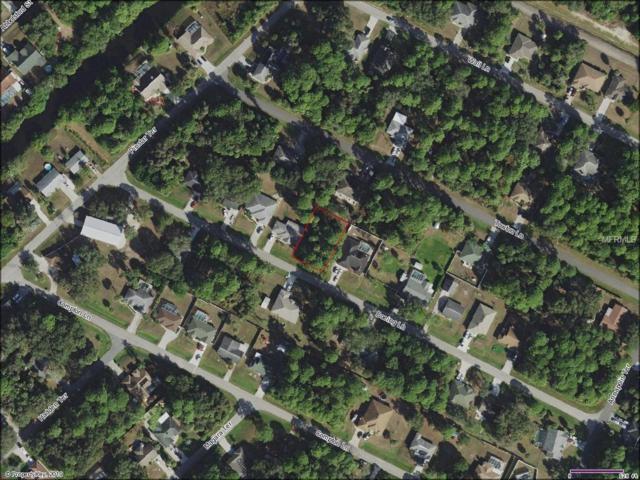 Boeing Lane, North Port, FL 34287 (MLS #C7413853) :: The Duncan Duo Team