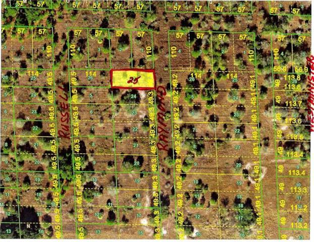 28219 Raymond Street, Punta Gorda, FL 33982 (MLS #C7413909) :: Mark and Joni Coulter | Better Homes and Gardens