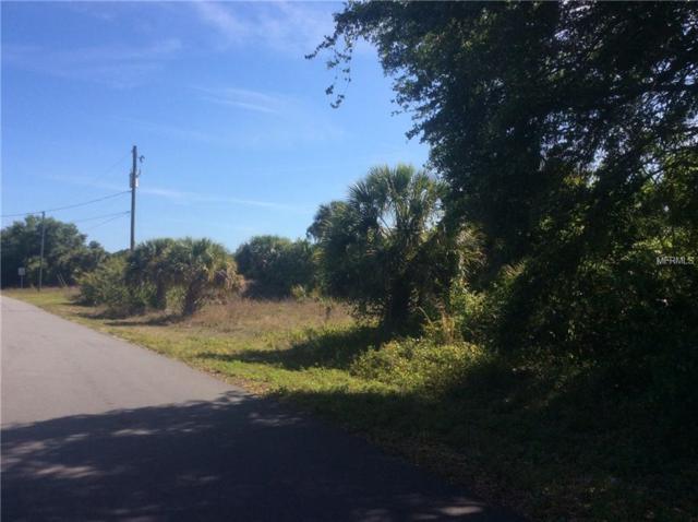 Carolina Street, North Port, FL 34288 (MLS #C7413914) :: Delgado Home Team at Keller Williams