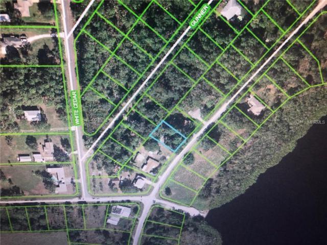 6342 Gunner Terrace, Sebring, FL 33875 (MLS #C7413931) :: Team Bohannon Keller Williams, Tampa Properties