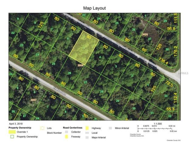 12333 Toynbee Lane, Port Charlotte, FL 33953 (MLS #C7414093) :: Medway Realty