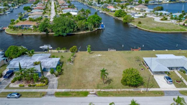 174 Beeney Road SE, Port Charlotte, FL 33952 (MLS #C7414127) :: The Duncan Duo Team