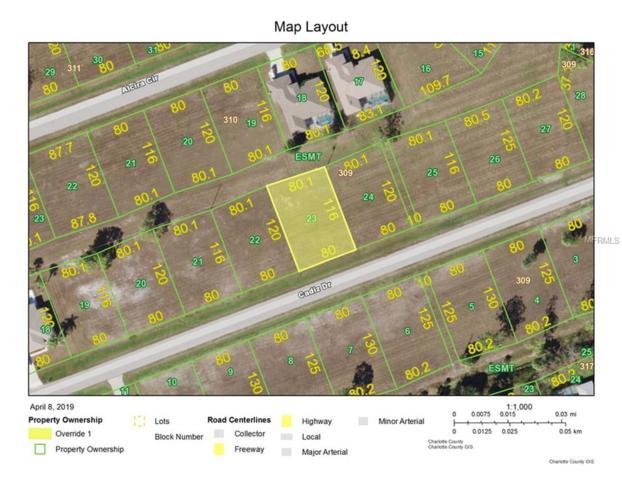 25238 Cadiz Drive, Punta Gorda, FL 33955 (MLS #C7414164) :: Baird Realty Group