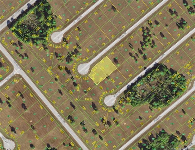 12402 & 12410 Corbina Court, Placida, FL 33946 (MLS #C7414216) :: Burwell Real Estate