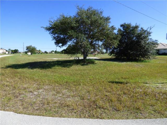 17310 Tampico Lane, Punta Gorda, FL 33955 (MLS #C7414508) :: Delgado Home Team at Keller Williams
